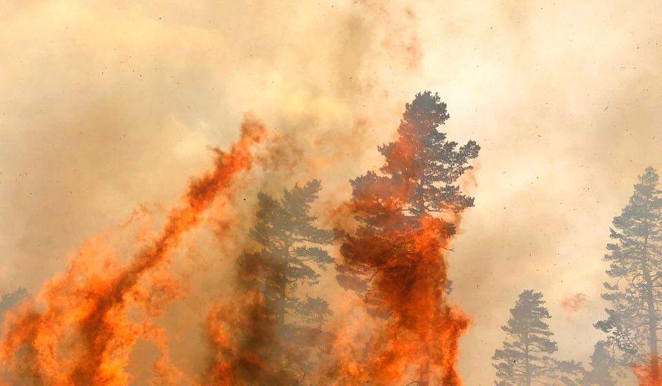 Vulin smatra da je deo požara u Pčinjskom okrugu podmetnut. Foto MUP