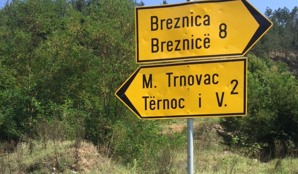 Foto. N. Lazić