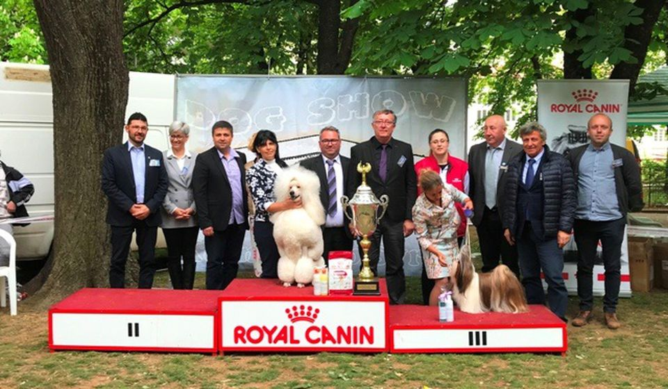 Pobednici izložbe. Foto VranjeNews