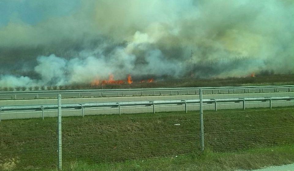 Jak vetar još više rasplamsava vatru. Foto VranjeNews