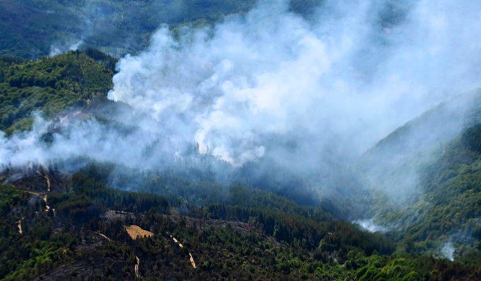 Jedan od požara koji je ovih dana besneo u okolini Vranja. Foto MUPFoto MUP