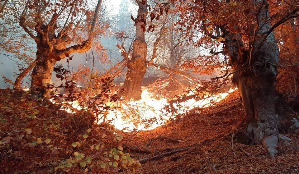 Požar na Čestelinu. Foto lična arhiva