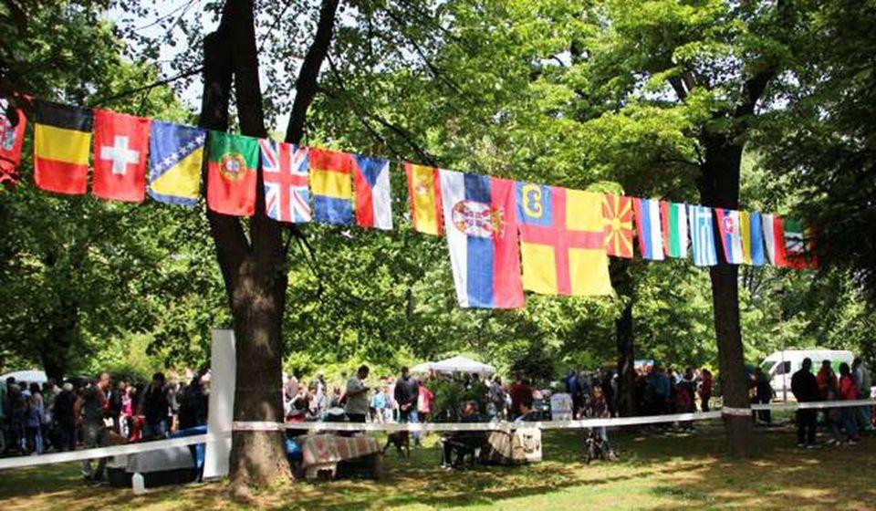 IX Međunarodna izložba pasa svih rasa. Foto Grad Vranje