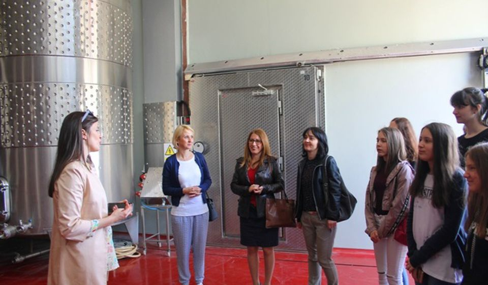Kako postati uspešan ženski preduzetnik. Foto VranjeNews
